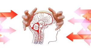 formation psychologie
